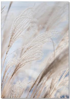 Grass 5 Notizblock