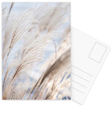 Grass 5 Postkartenset