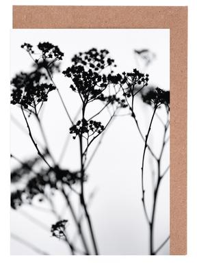 Silhouettes 4 Greeting Card Set