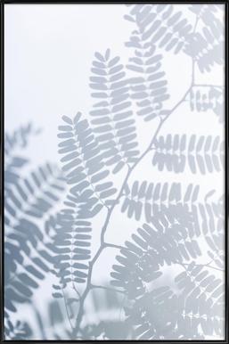 Sun-Kissed Poster in Standard Frame