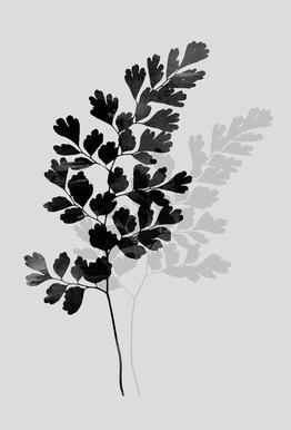Watercolor Leaves 14 Aluminium Print