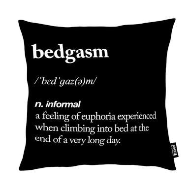 Bedgasm Cushion