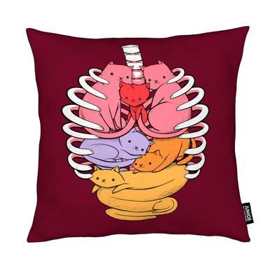 Anatomicat Cushion