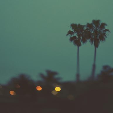 California Nights Canvas Print