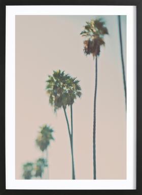 Blurry Palms Color affiche sous cadre en bois