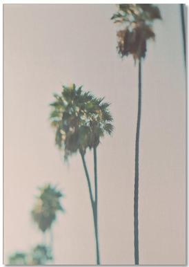 Blurry Palms Color bloc-notes