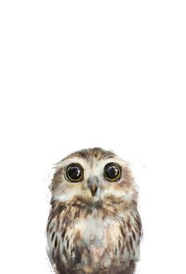 Little Owl tableau en verre