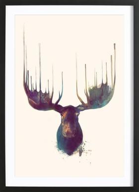 Moose affiche sous cadre en bois