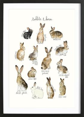 Rabbits and Hares Framed Print