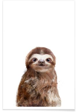 Little Sloth Illustration Poster