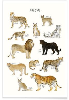 Wilde katten illustratie poster
