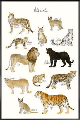 Wild Cats affiche encadrée
