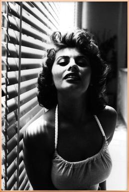Sophia Loren Portrait Poster in Aluminium Frame