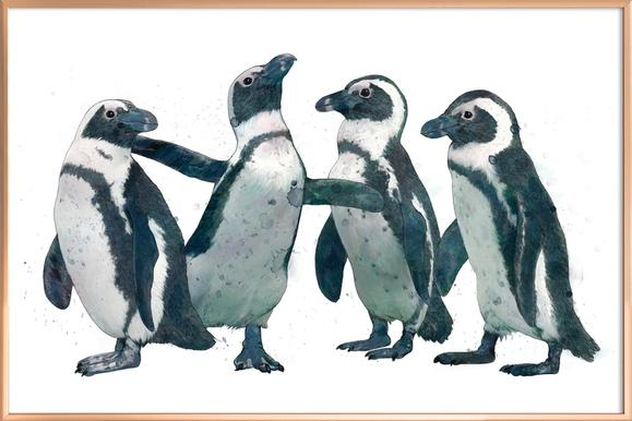 Penguins poster in aluminium lijst