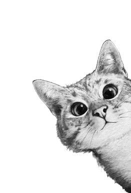Sneaky Cat alu dibond