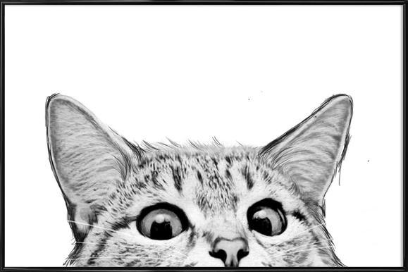 Cat -Bild mit Kunststoffrahmen