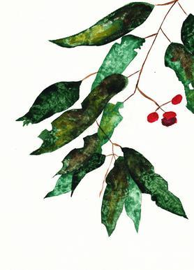 Autumn Berry 1 Canvas Print