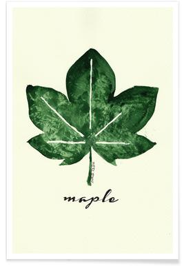 Maple Poster