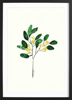 Wild Plant Poster in houten lijst