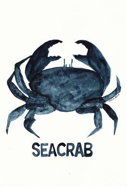 Seacrab Acrylic Glass Print