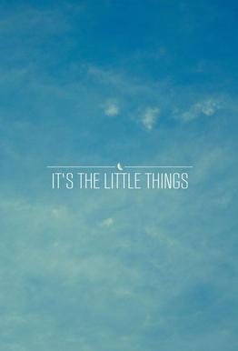 Little Things acrylglas print