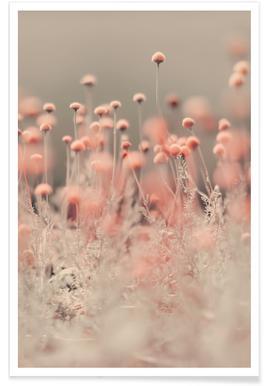 Pink Angel affiche