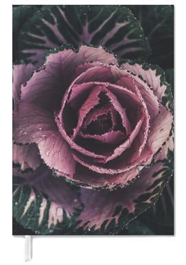 Pink Rosette agenda