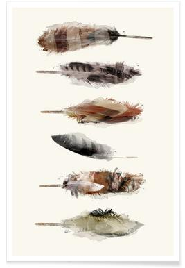 Free Fall Feathers Poster