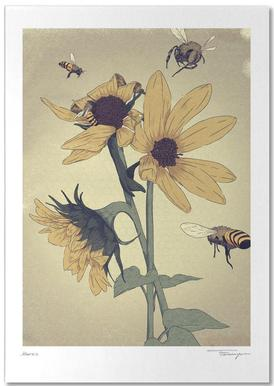 Bees Notizblock