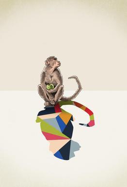 Walking Shadow - Monkey acrylglas print