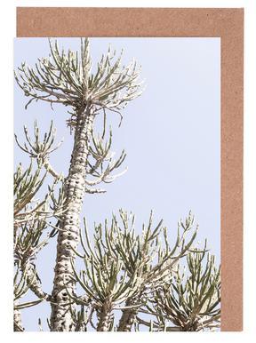 Tankwa Euphorbia 3 wenskaartenset