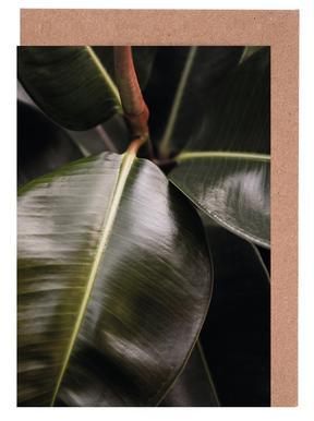 Ficus Bubu Greeting Card Set