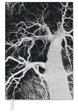Oak Tree 1 Terminplaner