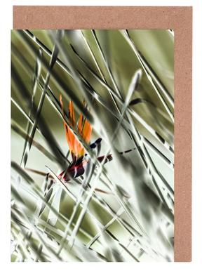 Strelitzia Greeting Card Set