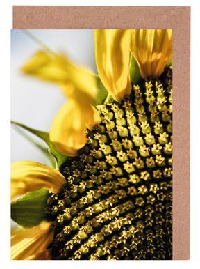 Sunflower wenskaartenset