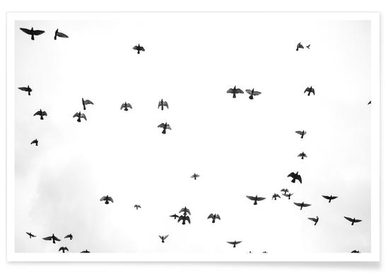 Flight & Freedom 03 Poster