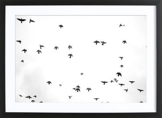 Flight & Freedom 03 Framed Print