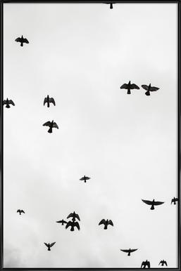 Flight & Freedom 04 Framed Poster