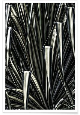 Jungle brush Poster