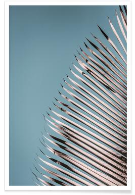 Tropical Heat 02 Affiche