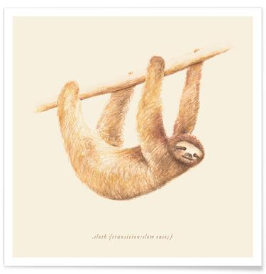 Sloth affiche