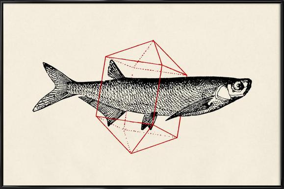 Fish in Geometrics II Framed Poster