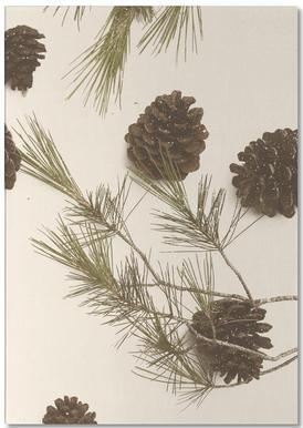 Merry Christmas Pinecones Notepad