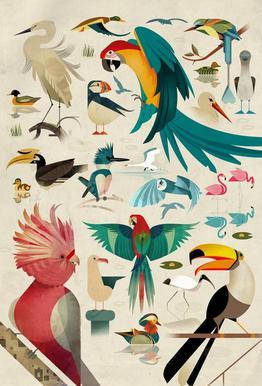 Birds tableau en verre