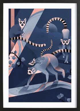 Katta Framed Print