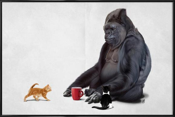 I Should Koko Poster in Standard Frame