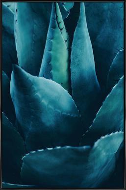 Cactus No.4 Poster im Kunststoffrahmen