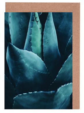 Cactus No.4 cartes de vœux