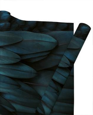 Dark Feathers -Geschenkpapier
