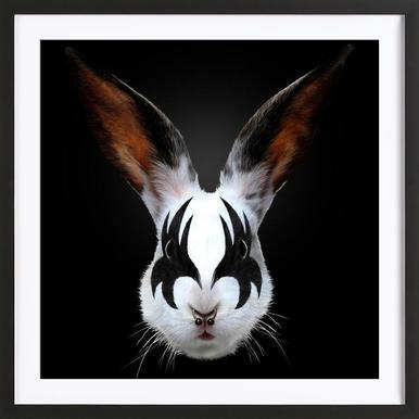 Kiss Of A Rabbit Framed Print